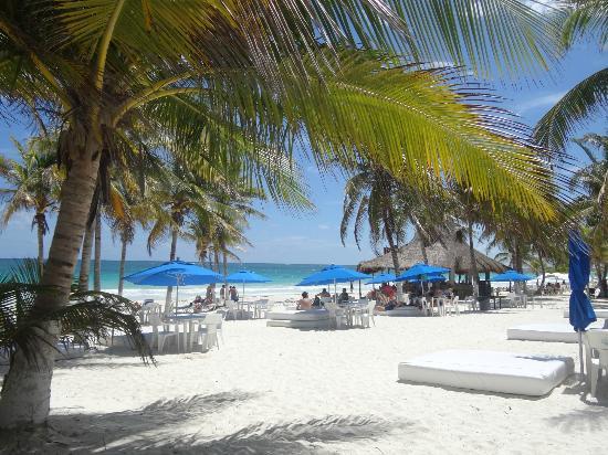 Orlando Miami Playa Paraiso